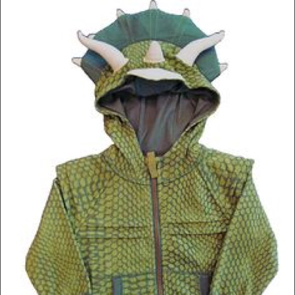 Mens Pullover Hoodie Fleece with Pockets The Dinosaur Claws